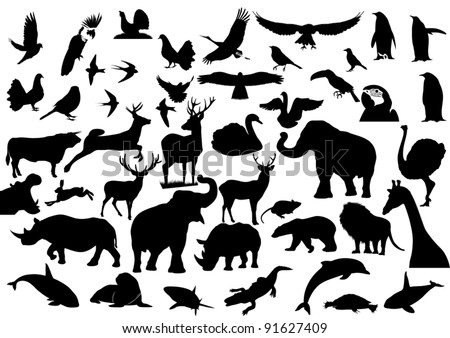 Contour images of fauna on the planet Earth - stock vector