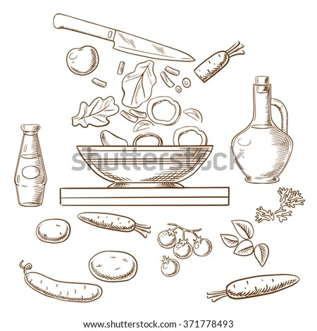 Cooking salad process showing bowl with sliced fresh vegetables surrounded by whole carrots, cucumber, tomatoes, potatoes, spicy herbs, bottles of olive oil and soy sauce. Vector sketch