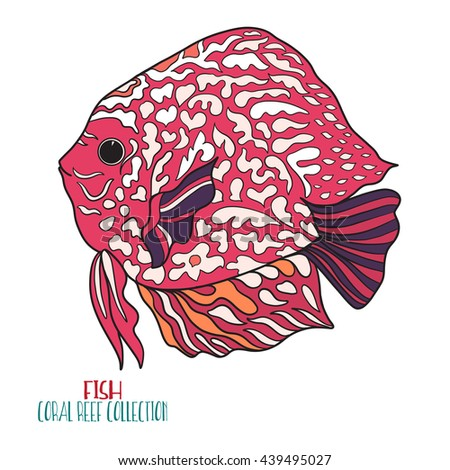 Coral reef collection. Sea or aquarium fish. Colored Vector illustration.