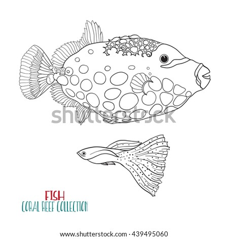 Sea Or Aquarium Fish Outline Vector Illustration Coloring Book For