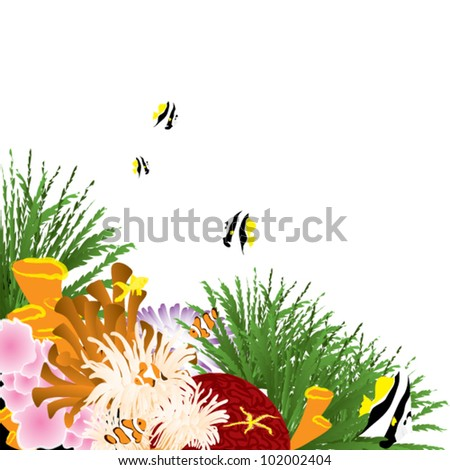 coral underwater scene - stock vector