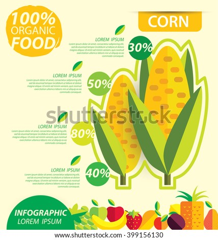 Corn. Infographic template. vector illustration.