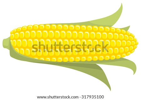 Corn on the Cob / Sweetcorn with leaves, on transparent background, flat graphic vector illustration. Fully adjustable & scalable. - stock vector