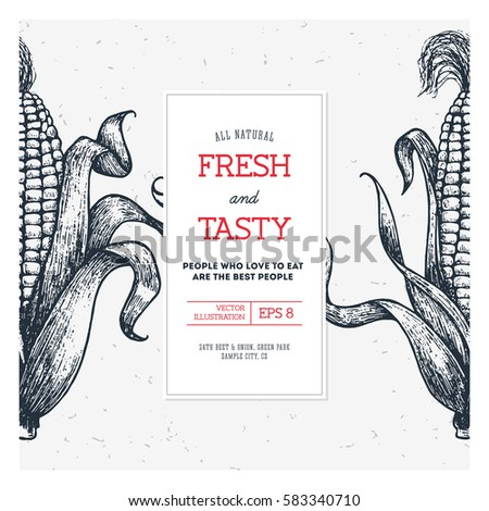 Corn On Cob Vintage Design Template Stock Vector 585031177 ...