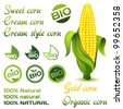 Corn organic set - stock vector