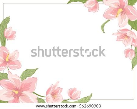Corner frame template sakura magnolia hellebore stock vector corner frame template with sakura magnolia hellebore flowers on white background horizontal landscape orientation maxwellsz