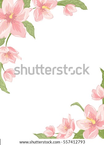 Corner Frame Template With Sakura Magnolia Hellebore Flowers On White Background Vertical Portrait Orientation