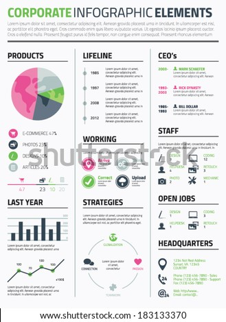 Corporate infographic resume elements to display data template vector  - stock vector
