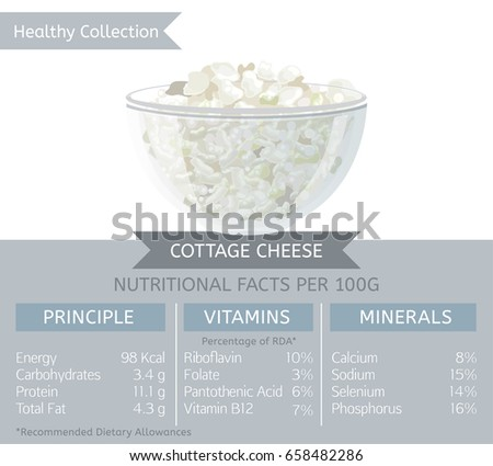Cottage Cheese Health Benefits. Vector Illustration With Useful Nutritional  Facts. Essential Vitamins And Minerals