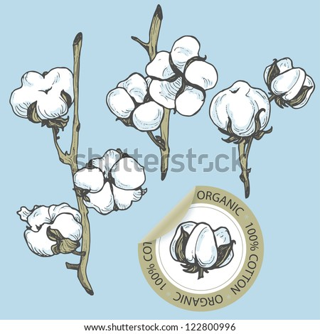 Cotton set with sticker in vector