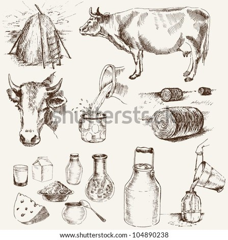 cow and milk products. set of vector elements - stock vector