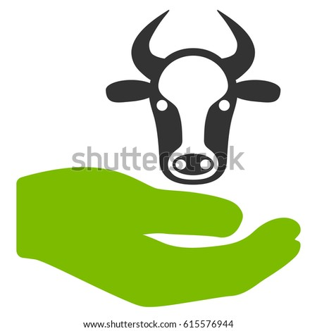 Cow Care Hand vector icon. Flat bicolor eco green and gray symbol. Pictogram is isolated on a white background. Designed for web and software interfaces.