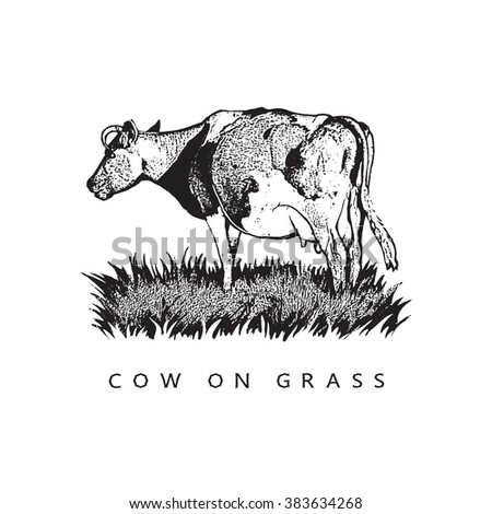 Cow On Grass. Graphic Vector Illustration. Black and white image. - stock vector