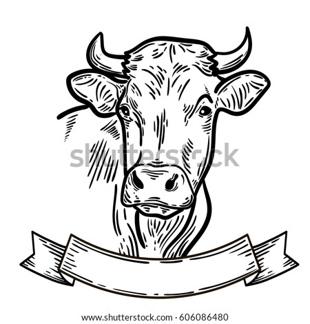 Cow+drawing