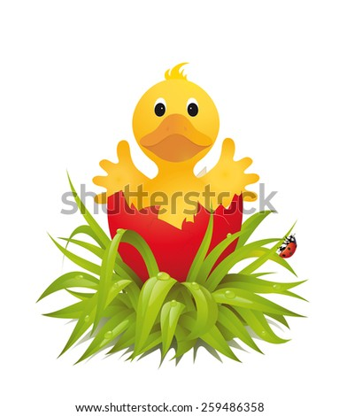 Cracked red egg with cute chick inside   Vector illustration isolated on white background - stock vector