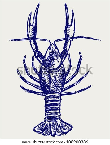 Crayfish sketch. Doodle style