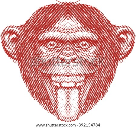 Crazy Monkey face, chimpanzee