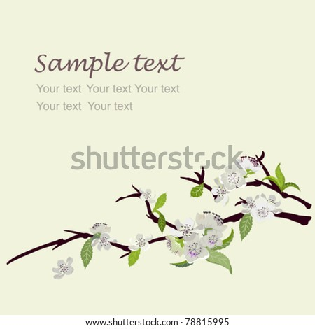 Cream invitation or a greeting card with a branch white peach flowers - stock vector