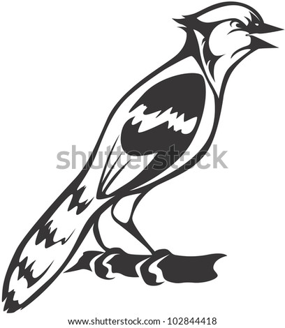 Creative Blue Jay Illustration