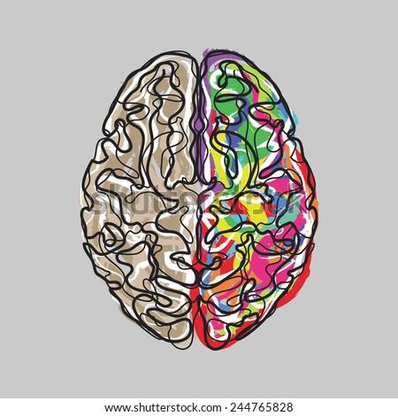 Creative brain with color strokes vector  - stock vector