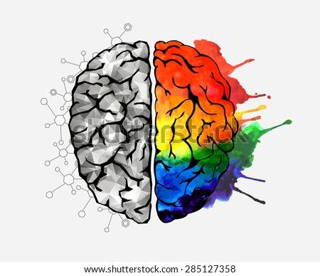 Creative concept of the human brain. Vector illustration - stock vector