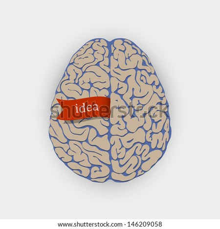 Creative  vector illustration human brain  - stock vector