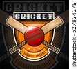 Cricket ball with cross bat in center of shield. Sport logo for any team or championship