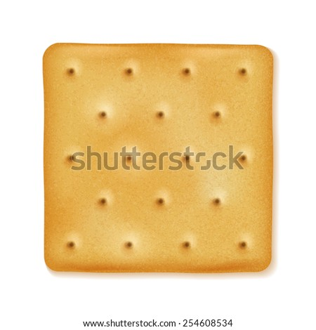 Crispy cracker isolated. Crunchy biscuit. Yellow square cookie. - stock vector
