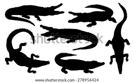 crocodile silhouettes on the white background - stock vector