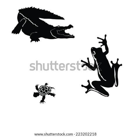 crocodile,tree frog,little turtle - stock vector