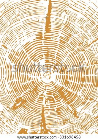 Cross section of tree stump  brown vector - stock vector