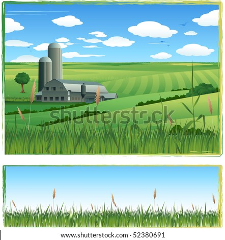 Cultivated green field