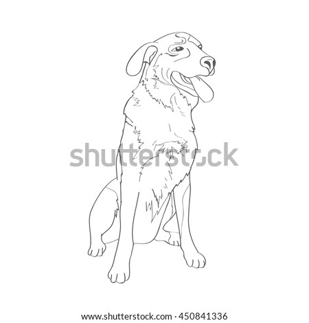 Cur Mongrel Dogs Crossbreed Different Breeds Stock Vector