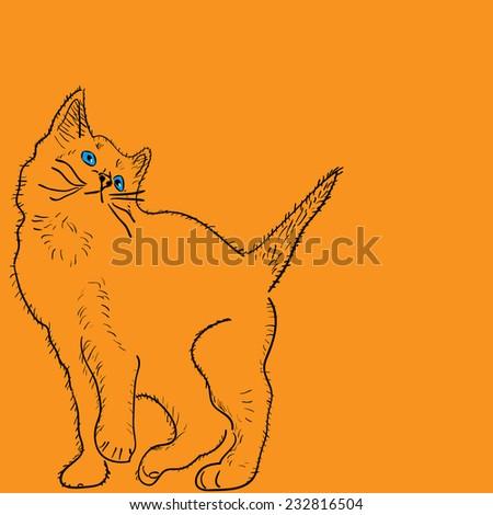 curious cat - stock vector