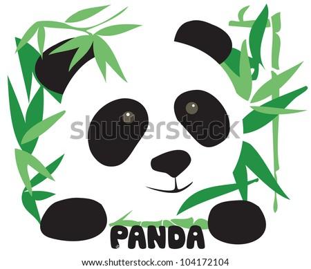 Curious cute Panda - stock vector