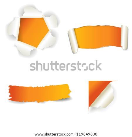 curl paper - stock vector