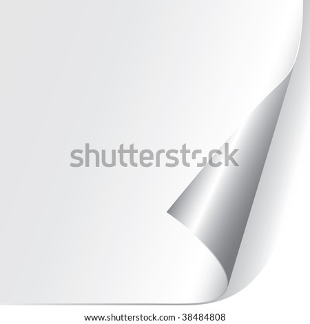 Curled Paper Corner (vector). In the gallery also available XXL jpeg version of this image. - stock vector