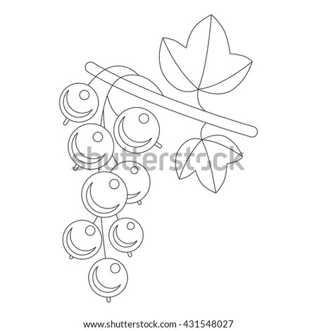 Currant Berries. Illustration of branch of ripe currant berries with leaves isolated on white. Page to be colored.