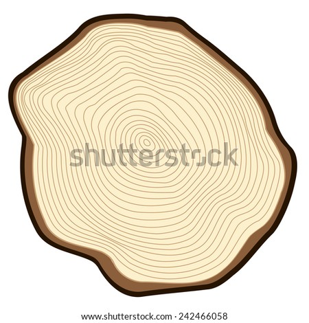 Cut of a tree. - stock vector