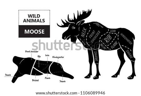 Diagram Of Moose Cuts Library Of Wiring Diagram