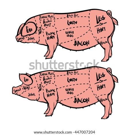 Pork Cuts Diagram Butchery Set Hand Stock Vector 447021913 ...