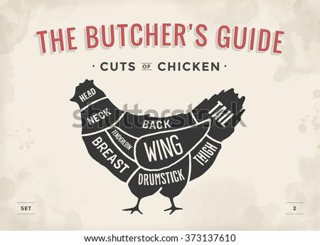 Poultry Stock Images  RoyaltyFree Images   Vectors