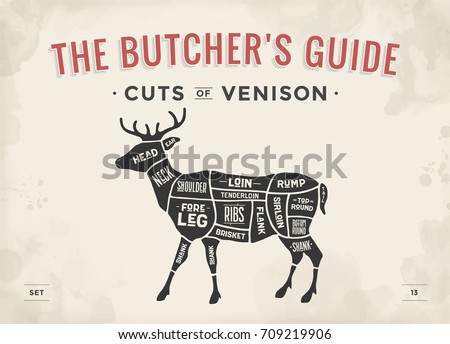 cut meat set poster butcher diagram stock vector royalty free rh shutterstock com Cat Butcher Diagram Deboning Deer