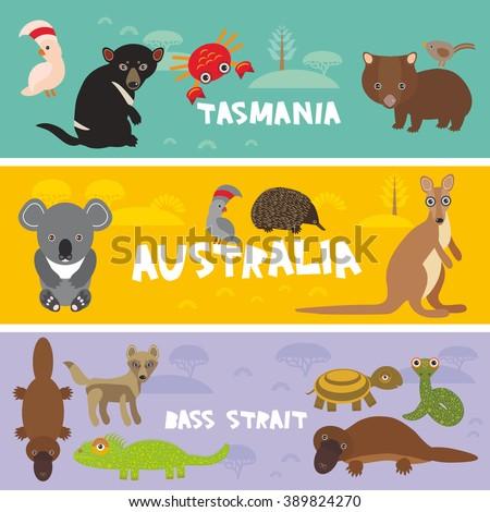 Cute animals set, Echidna koala Platypus Tasmanian devil Cockatoo parrot Wombat snake crab turtle kangaroo dingo kids background Australia, Tasmania Australian animals bright colorful banner. Vector - stock vector