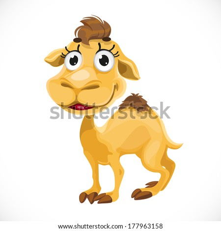 Cute baby camel isolated on white background - stock vector