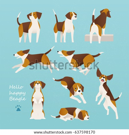 cute beagle dog lively actions vector illustration flat design