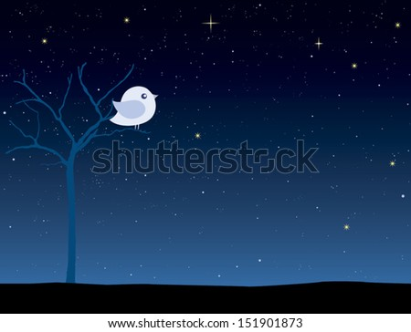 Cute bird on a tree at night