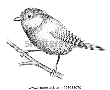Bird Sitting Stock Images Royalty-Free Images U0026 Vectors | Shutterstock