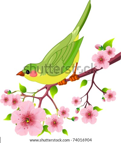 Cute bird sitting on blossom tree branch. Isolated on white background - stock vector