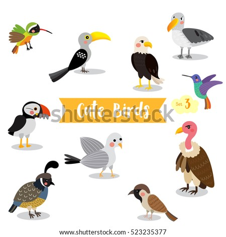 Cute Birds Animal cartoon on white background. Eagle. Vulture. Sparrow. Seagull. Puffin. Quail. Hummingbird. Albatross. Xantus. Yellow-Billed Hornbill. Vector illustration. Set 3.